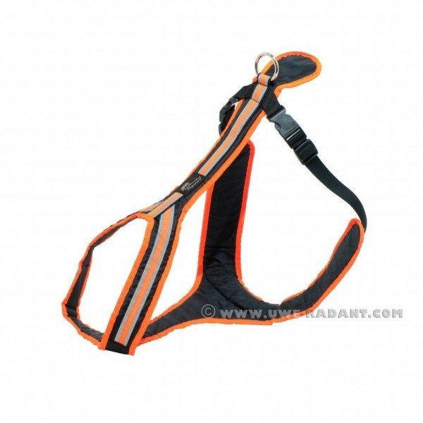 Führ- Und Zuggeschirr Safety (orange)