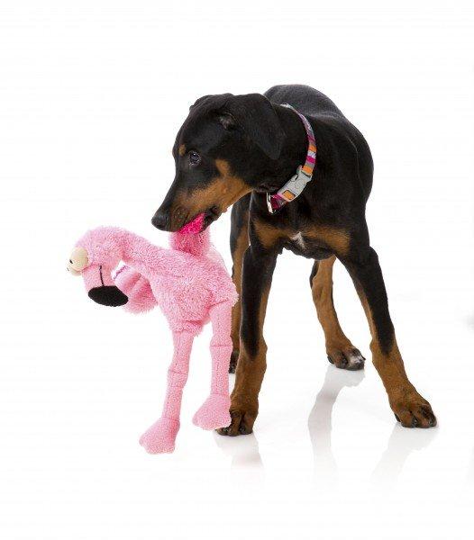 Fuzzyard - Flo - Der Flamingo