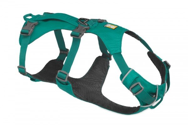 Flagline Harness Meltwater Teal