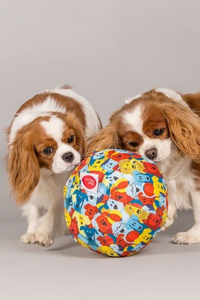 PetBloon Hundeball mit Luftballon