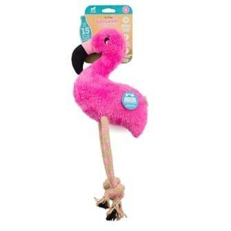 Beco - Fernando  the Flamingo