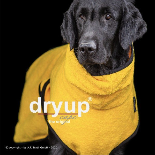 Dryup Cape - Yellow