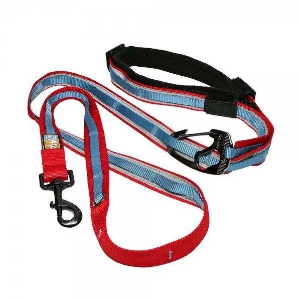 Quantum 6-in-1 Dog Leash