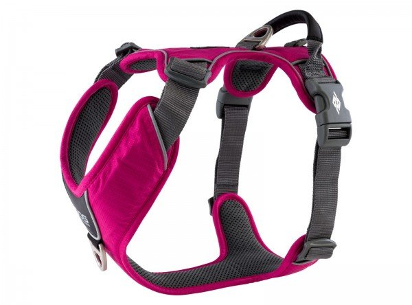 "Comfort Walk Pro Harness - ""VERSION"" 2020 Wild Rose"