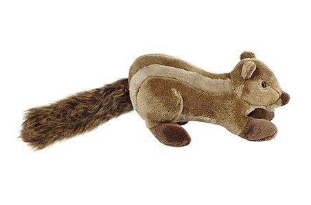 Eichhörnchen Peanut