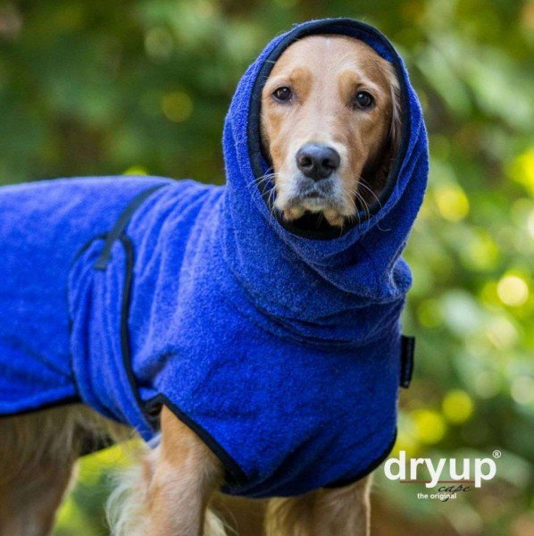 Dryup Cape - Blueberry