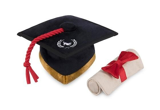 Graduation Hat & Scroll