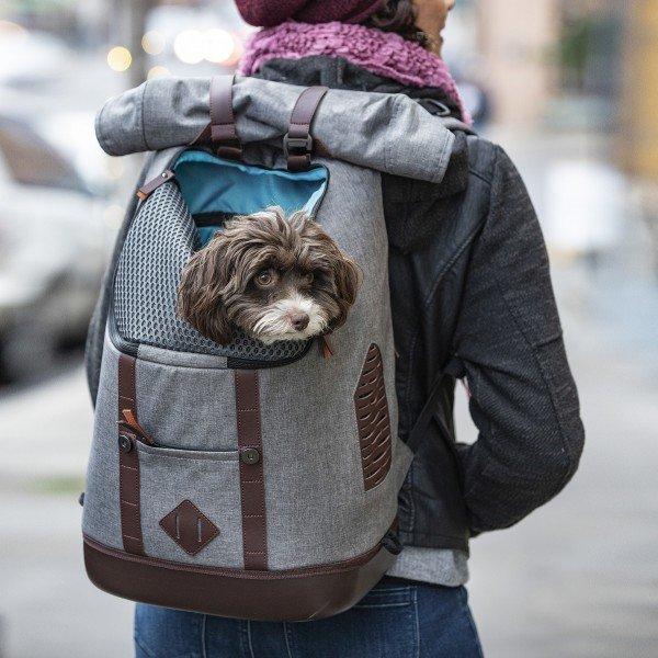 Hunderucksack - K9 Heather Anthrazit