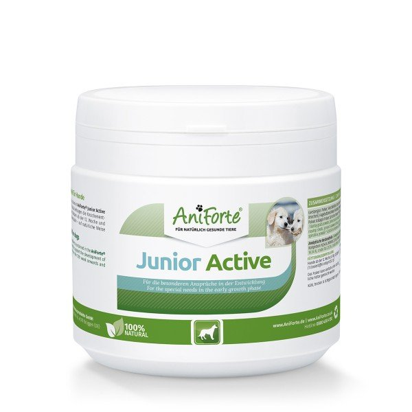 Junior Active