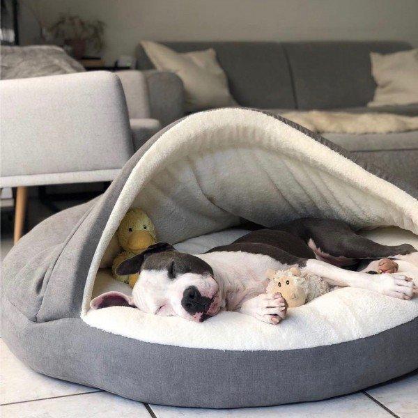 Kuschelhöhle - Hundebett