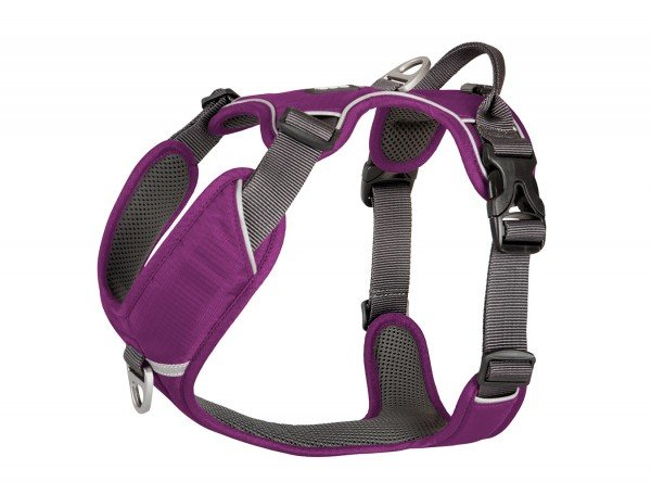 Comfort Walk Pro Harness - Purple Passion