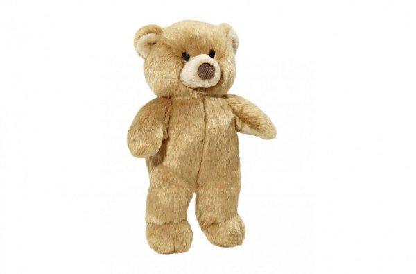 Mr. Honey Bear