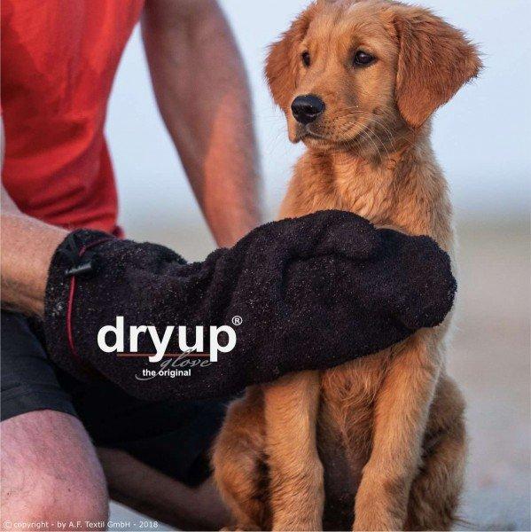 Dryup Glove