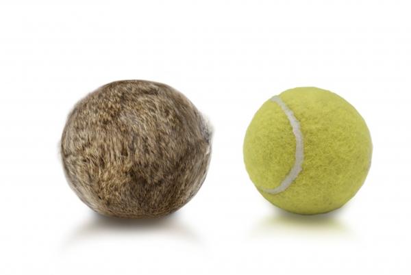 Firedog - Kaninchenfell Tennisball