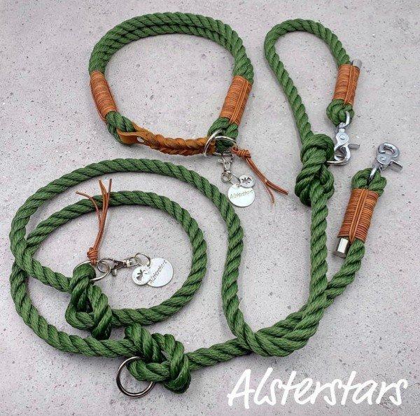 Tauleinenset Green meets Leather - Tauhalsband & Tauleine