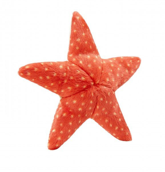 Fluff & Tuff - Ziggy Starfish