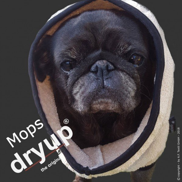 Dryup Mops