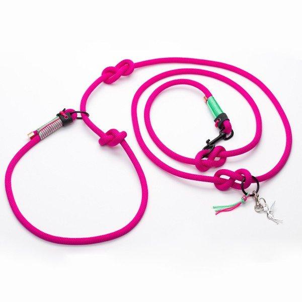 Tauleine - Crazy Pink - Alsterstars
