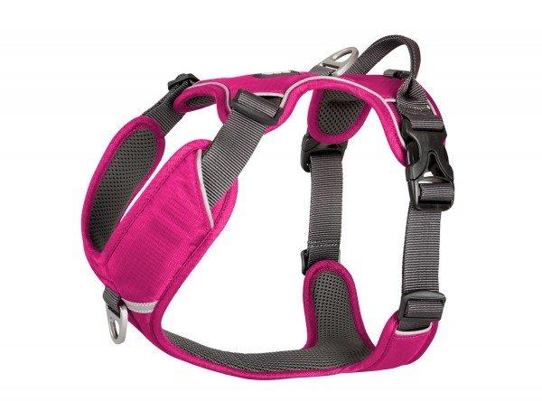 Comfort Walk Pro Harness - Wild Rose