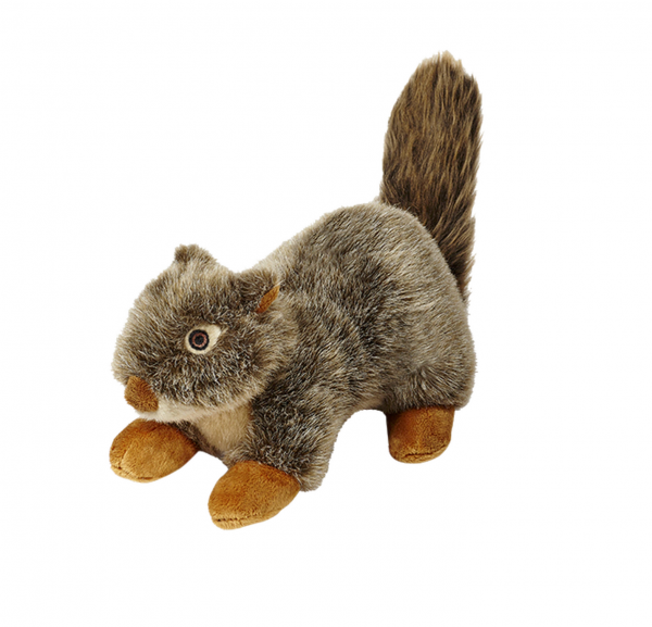 Nuts - The Squirrel