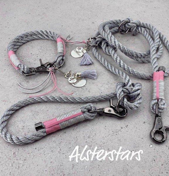 Tauleinenset Silver Rose Power - Tauhalsband & Tauleine