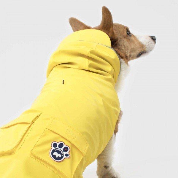Canada Pooch -Torrential Tracker - gelb