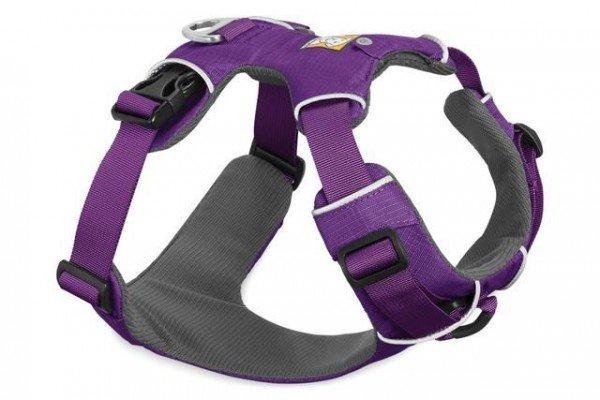 Front Range Harness - Tillandsia purple