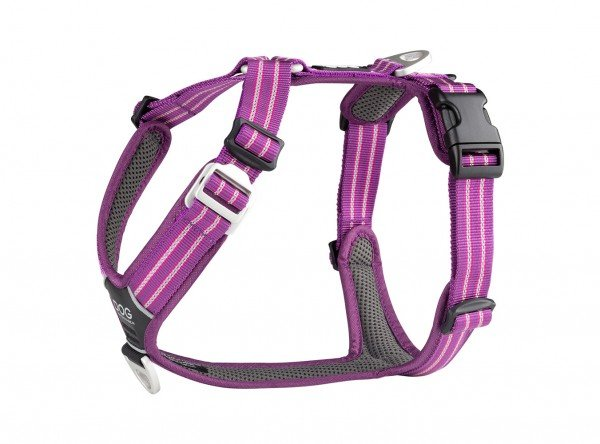 Comfort Walk Harness Air - Purple Passion