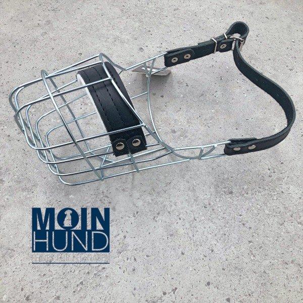 Safety First - Drahtmaulkorb Beagle Rüde