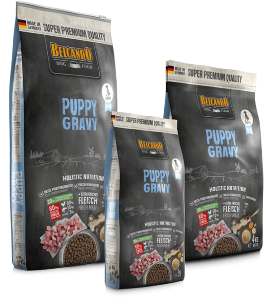 Puppy Gravy