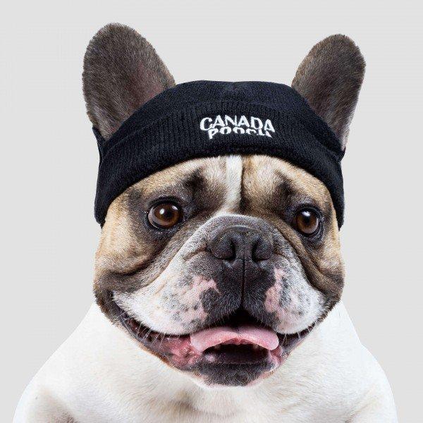 Canada Pooch - Beanie Hat schwarz