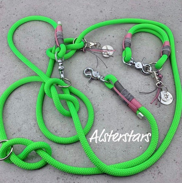 Tauleinenset Crazy Green - Tauleine & Tauhalsband