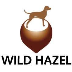 Wild Hazel